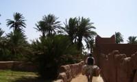 Excursions journée avec guide - Ouled Brahim - Villa Zagora