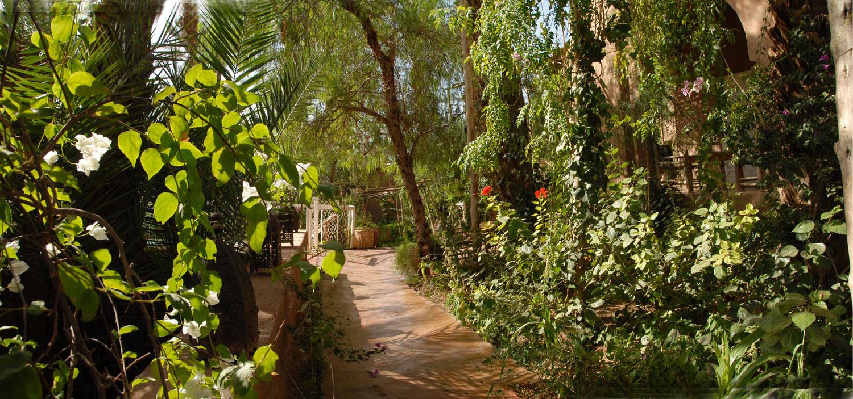 Le riad villa zagora ma villa au sahara for Restaurant le jardin vias
