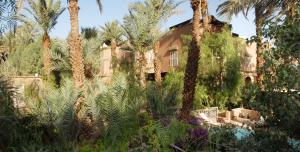 Pirvatization of the riad Villa Zaora