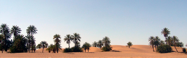 Le désert marocain - Villa Zagora