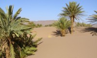Excursions journée - Ouled Brahim - Villa Zagora
